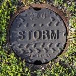 EJ Storm cover.jpg