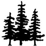 will jackson tree service.jpg
